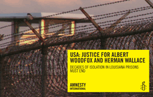 amnesty-report-resources