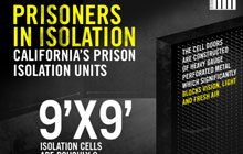 ca-isolation-solitary-watch-resources
